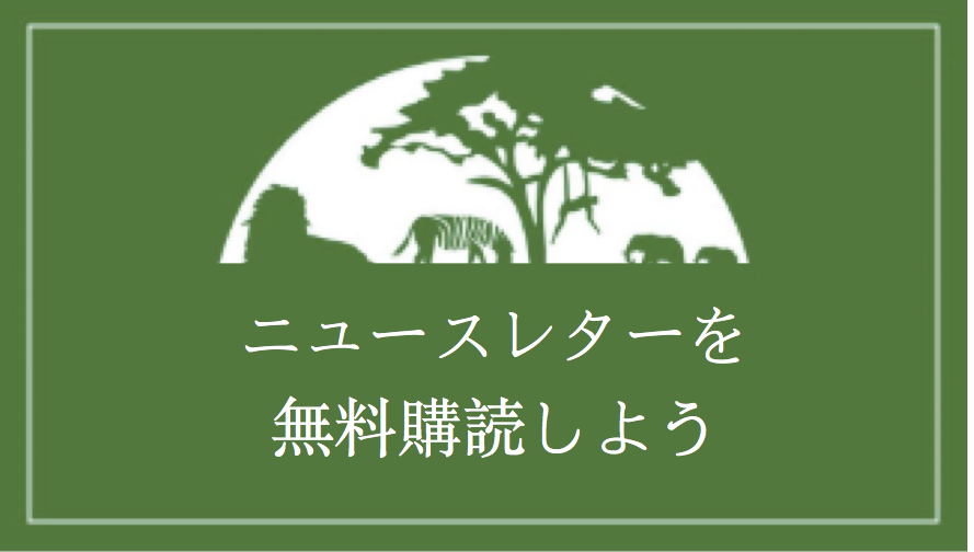 Japanese Newsletter Banner