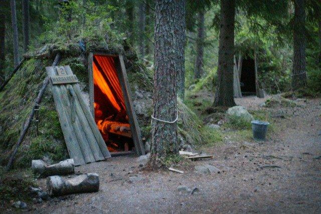 Ecolodge en el bosque