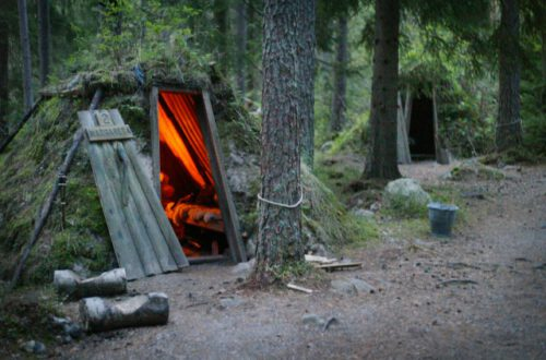 Ecolodges in the woods