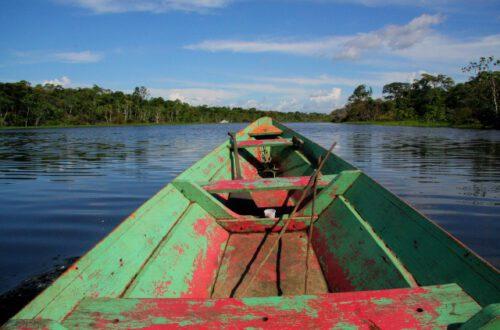 アマゾンの熱帯雨林でエコツアー