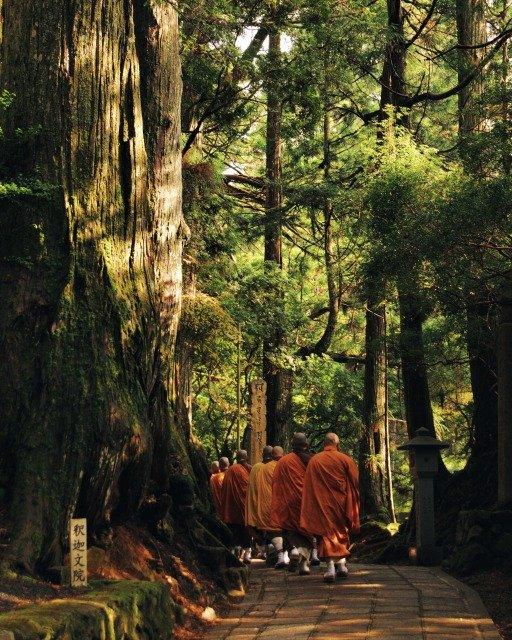 Rutas de Viaje de Peregrinación Alrededor del Mundo